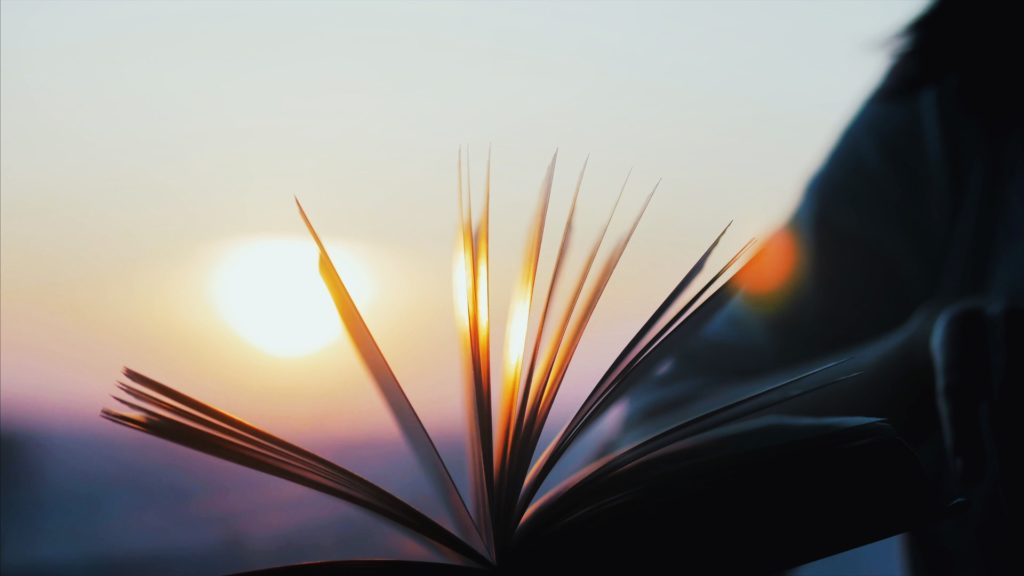 SEO(検索エンジン)についてと、Googleに評価される記事の作り方を教えてくれる本